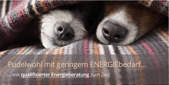 https://www.immobilienkontor-aachen.de/energieberatung.xhtml###Energiesparen, das ist das Stichwort. Reduzieren Sie konsequent den Energiebedarf Ihres Hauses, sparen Sie an Kosten für jeden Energieträger durch eine effiziente Überprüfung Ihrer Immobilie auf Einsparpotetntial. Nehmen Sie unsterschiedlichste Förderquellen im Verbund meherer Maßnahmen zur Energieeinsparung Ihrer Immobilie in Anspruch. Oder Sie bauen gleich nach aktuelle Energieeinsparverordnung EnEV ein gefördertes KfW-Haus.