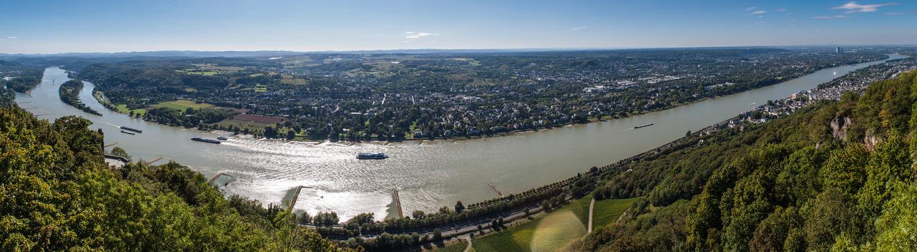 Blick vom Drachenfels auf Rhein