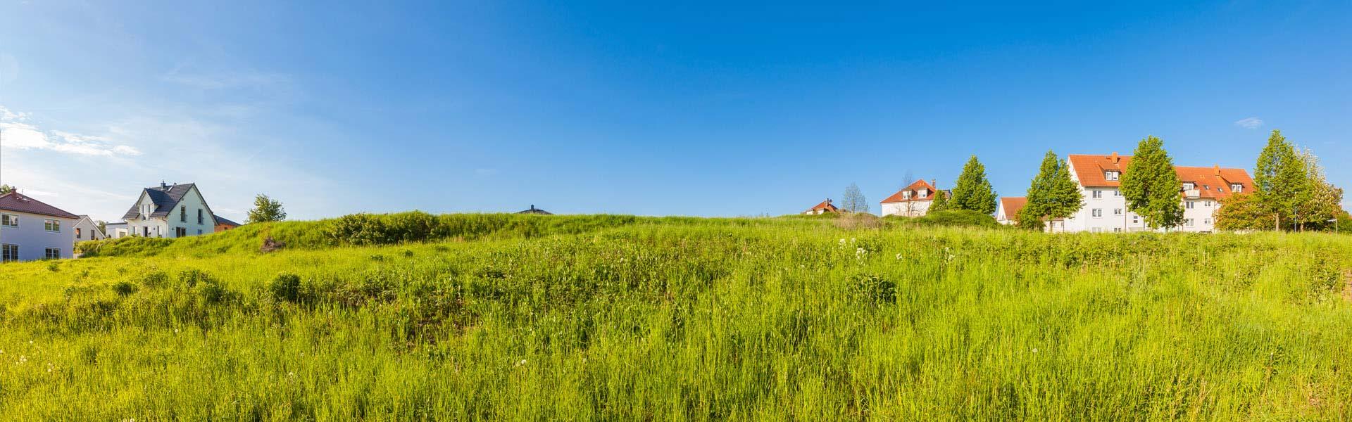 Feld mit Häusern im Hintergrund