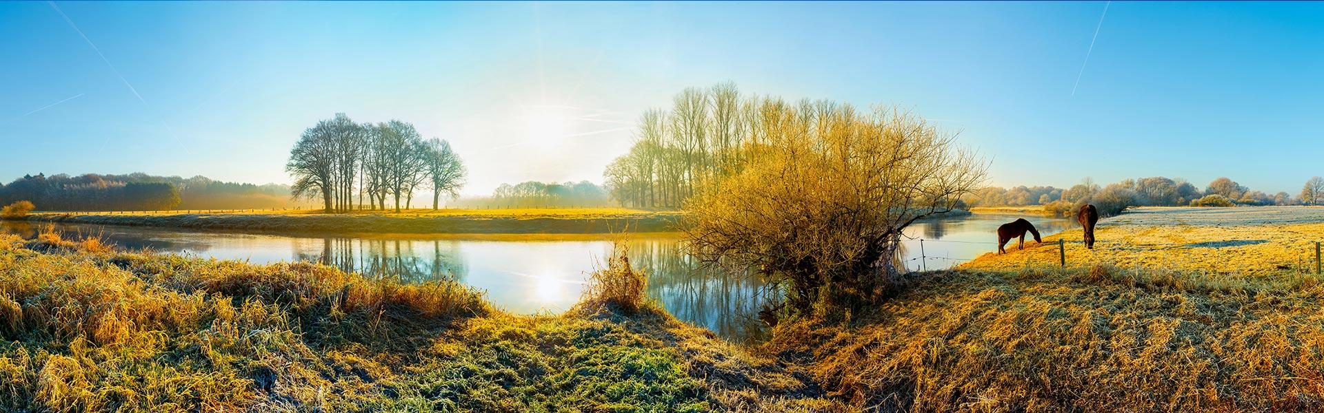 Fluss in der Natur bei Sonnenschein