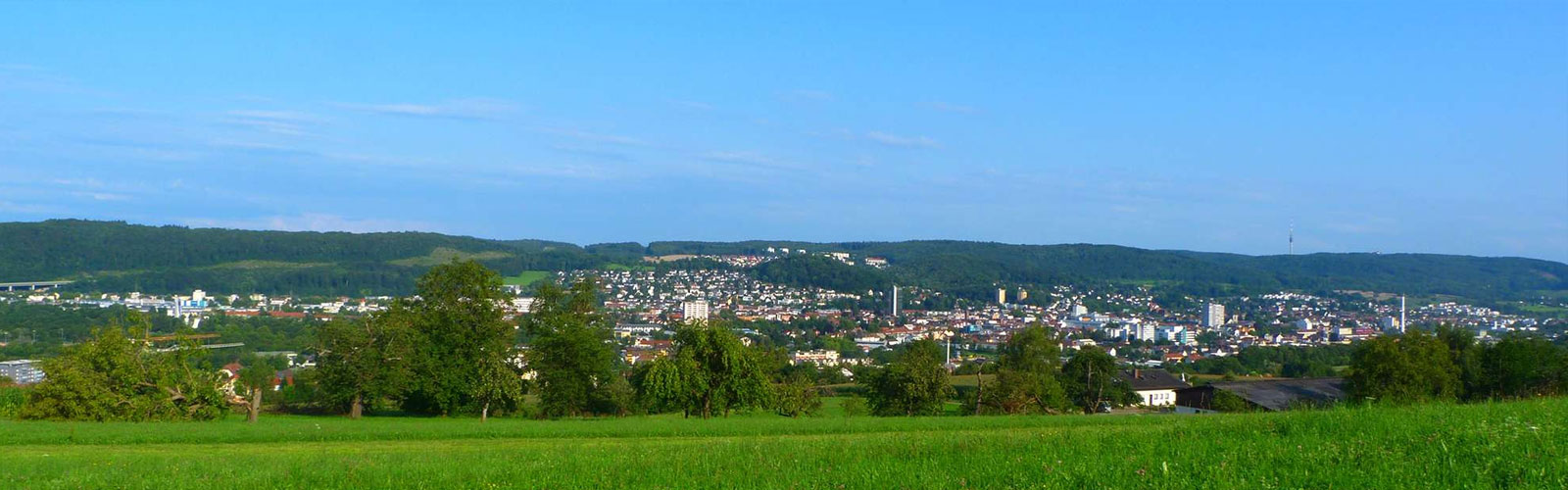 Lörrach Panorama